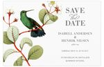 Save-the-date, Paradise Love